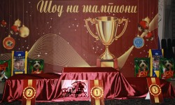 Шоу на шампиони 2012